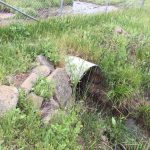 Storm Drain Pipe Replacement within Cow Pasture